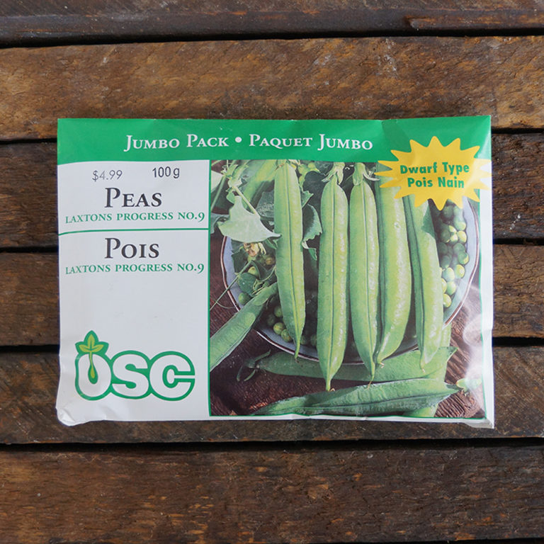 Pea Seeds – Laxton's Progress No. 9 – OSC