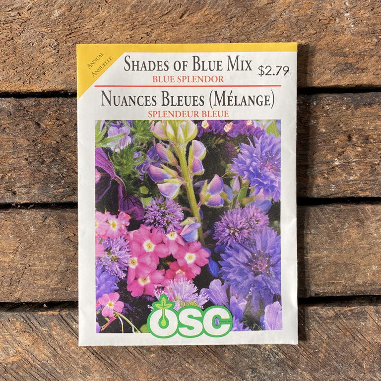 Shades of Blue Mix Seeds – Blue Splendor – OSC