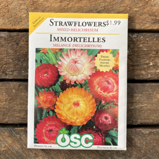 Strawflower Seeds – Mixed Helichrysum – OSC