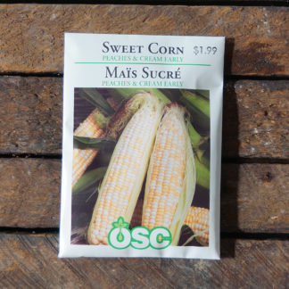 Corn Seeds – Sweet Peaches & Cream Early – OSC