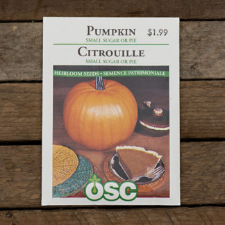 Pumpkin Seeds – Small Sugar or Pie – OSC