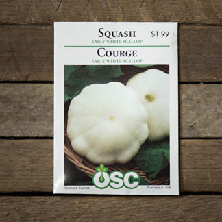 Squash Seeds – Early White Scallop – OSC