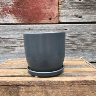 Eastham Egg with Attached Saucer Matte Grey