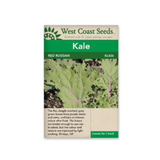 Kale Seeds – Red Russian – WCS